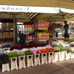 Bloemenhandel Wilri